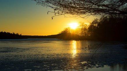 Синоптики рассказали, похолодает ли в Воронежской области на рабочей неделе