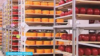 Моцарелла и сыр с плесенью воронежского производства – ближайшая реальность