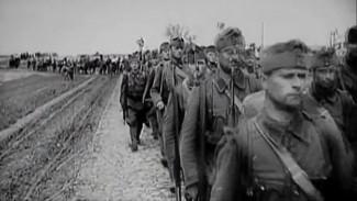 «Сражались за Венгрию на Дону». Садистов и убийц назвали героями