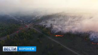Сотни людей и авиация: как на военном полигоне под Воронежем борются с крупным пожаром