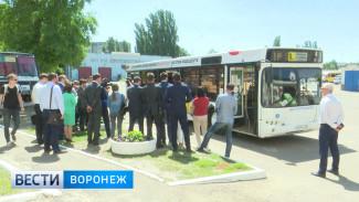 Отказавшимся от автомобилей воронежцам мэрия купит новые автобусы