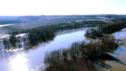 В двух реках Воронежской области уровень воды повысился почти на метр