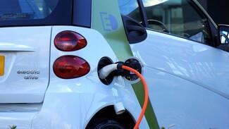Владельцев электрокаров в Воронежской области освободили от транспортного налога