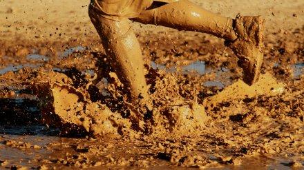 Воронежец кирпичом отомстил облившему его грязью Mercedes