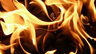 На пожаре в воронежском селе погиб пожилой мужчина