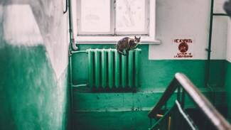 Стало известно, где провёл ночь пропавший в Воронеже 13-летний школьник