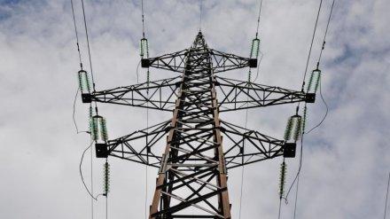 Энергетики попросили помощи воронежцев в поимке похитителей проводов