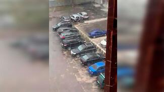 В Воронеже в конце апреля выпал снег: появилось видео
