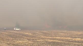 Лесной пожар в Воронежской области подобрался к заправке