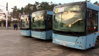 Воронеж получит шесть дополнительных автобусов от Минтранса
