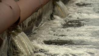 Воронежские ЛОС отказались платить 725 млн рублей за нанесённый водохранилищу ущерб