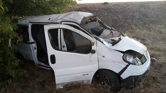 В Воронежской области микроавтобус вылетел в кювет: погибли 2 человека
