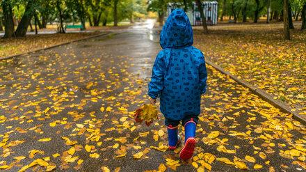 Метеорологи пообещали дождливые и ветреные выходные в Воронежской области