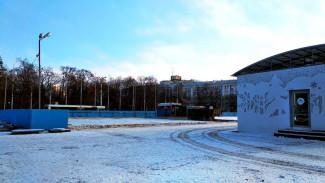 Власти назвали дату открытия катка на площади Ленина в Воронеже