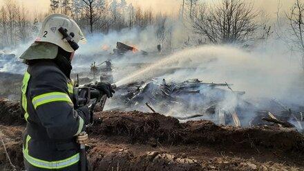 Сотрудники МЧС сообщили о ликвидации пожара в воронежской Масловке