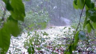 На Воронежскую область надвигаются грозовые дожди и град