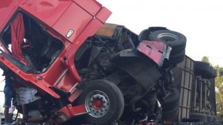На трассе в Воронежской области водитель фуры погиб в ДТП с другим большегрузом