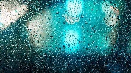На рабочей неделе в Воронежской области будет ветрено и дождливо