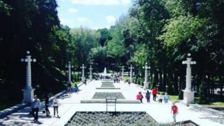 В воронежском Центральном парке появились четыре парковочных площадки