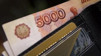 Воронежские семьи получили ещё по 10 тысяч рублей «детских» выплат