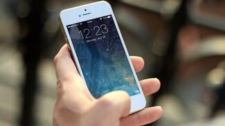 Воронежцы покупают корейские смартфоны в 6 раз чаще американских