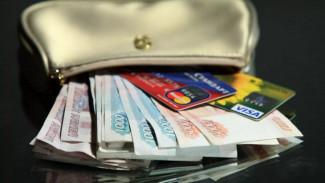 Эксперты назвали самые высокооплачиваемые профессии в Воронеже в период пандемии