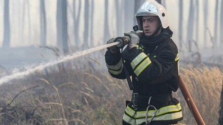 В Воронежской области потушили ещё один крупный лесной пожар