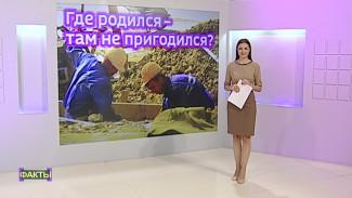 Москва подождёт. Кто переезжает в Воронеж ради работы