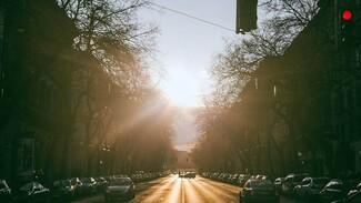 В центре Воронежа запретят парковку из-за 350-летия со дня рождения Петра I