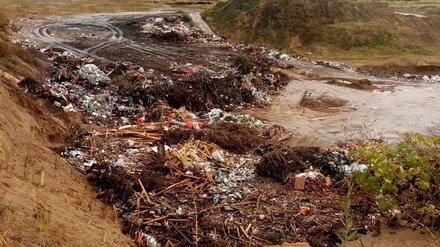 «Вода станет отравленной». Жители села под Воронежем пожаловались на незаконную свалку