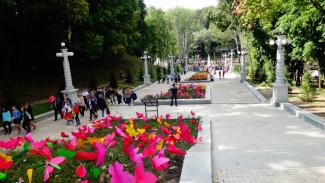 У Воронежского центрального парка появился официальный сайт
