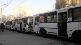 Для пострадавших из-за забастовки маршрутчиков воронежцев выйдут дополнительные автобусы