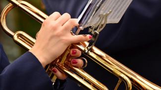 Лучшие духовые оркестры выступят на главной площади Воронежа