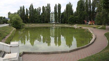 В Воронеже в обновлённом за 7 млн рублей озере на Минской едва не утонул ребёнок