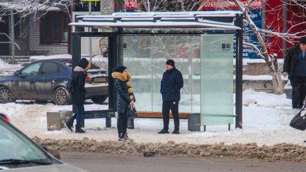 В Воронеже с декабря увеличат число автобусов на 4 маршрутах