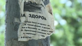 Настойчиво и по тексту. Как тульский робот борется с незаконной рекламой в Воронеже