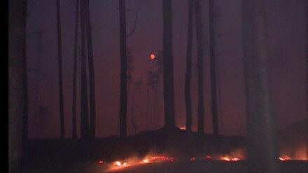 К расследованию причин пожаров в Воронежской области подключат полицию