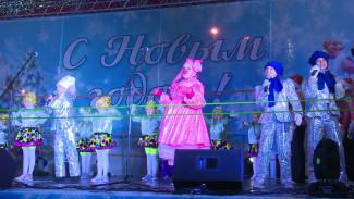 Воронежцы на открытии главной ёлки города «спасли» новогоднего поросёнка