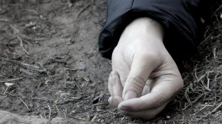 В Воронеже в соседних дворах нашли тела женщины и мужчины