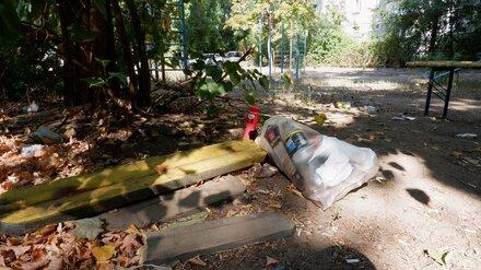 Воронежская детская площадка вошла в топ худших в России