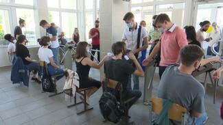 Воронежский госуниверситет доверил студентам измерять температуру на входе в вуз