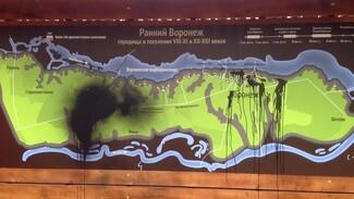 Испортивший знак Большой воронежской экотропы вандал уже уничтожал другие указатели