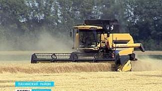 Воронежские аграрии намерены собрать 4 миллиона тонн зерна
