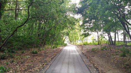 В «дикой части» Центрального парка Воронежа заасфальтировали тропинки