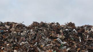 В Воронежской области установили новый тариф на вывоз мусора