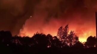 Воронежская прокуратура проверит версию поджога при крупных пожарах в 4 районах области