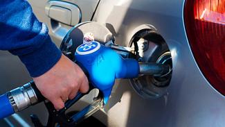 Бензин в Воронежской области за год подорожал на 11%