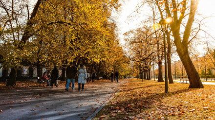 Воронежские синоптики пообещали заморозки на новой рабочей неделе