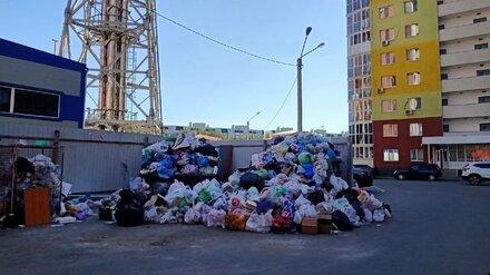 Воронежцы пожаловались на гору пакетов с мусором во дворе жилого дома