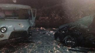 В Воронежской области в массовом ДТП пострадали трое взрослых и две маленькие девочки